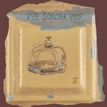 II | The Sonora Pine